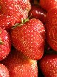 Juicy strawberries Stock Photo