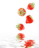 Juicy strawberries. Fresh juicy strawberries falling in water Stock Photo