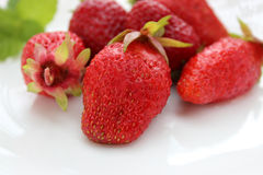 Juicy strawberries closeup. On white terms royalty free stock images
