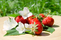 Juicy strawberries in the garden. Torn juicy strawberries with leaves and flowers in the garden royalty free stock images