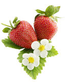 Juicy strawberries, isolation Royalty Free Stock Image