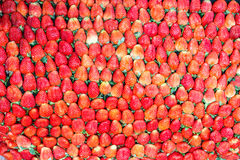 Juicy strawberries. Texture from juicy and fresh strawberries Stock Photography