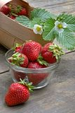 Juicy strawberry Royalty Free Stock Photo