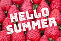 Strawberry background with text Hello Summer royalty free stock photography