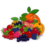 Juicy Summer Fruits and Berries Stock Photo