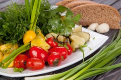 Juicy, summer vegetable salad cutting from fresh vegetables and greens in a beautiful serving on a wooden table royalty free stock photography