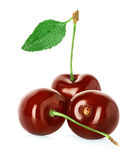 Juicy sweet cherry with leaf isolated on white Stock Photography