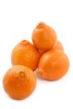 Juicy tangerine Stock Images