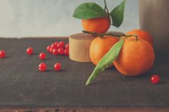 Juicy tangerines and red current. On wooden table Stock Images