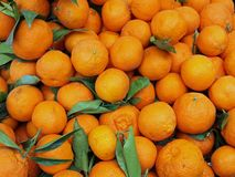 Juicy tangerines for sale at vegetable market Stock Photo