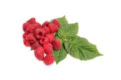 Juicy tasty raspberries on a white. Stock Photo