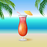 Juicy tequila sunrise drink cocktail in a tall glass Royalty Free Stock Photos