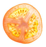Juicy Tomato Slice Detail Royalty Free Stock Photography