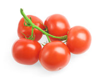 Juicy tomatoes. Ripe tomatoes isolated on white background Stock Photography