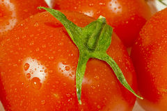 Juicy tomatoes close up. Juicy tomatoes with water drops close up. Shallow depth-of-field stock photo