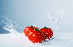 Juicy tomatoes thrown water. On the blue background Royalty Free Stock Image