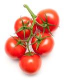 Juicy tomatoes on white Stock Photo