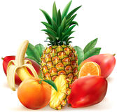 Juicy tropical fruit Stock Image