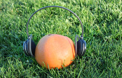 Juicy tunes. A fruit with a headphone wrapped around it Royalty Free Stock Image