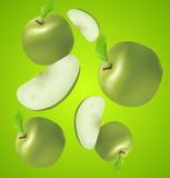 Juicy vector apples with sections Stock Photography