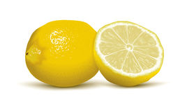 Juicy vector lemons. Two isolated juicy vector lemons on the white background Royalty Free Stock Photo