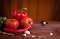 Juicy vegetables, herbs and spices on dark wood Stock Photography