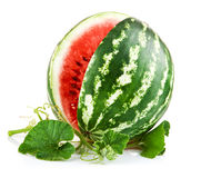Juicy watermelon in cut with green leaf Royalty Free Stock Photography