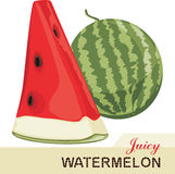 Juicy watermelon isolated on the white background Stock Image
