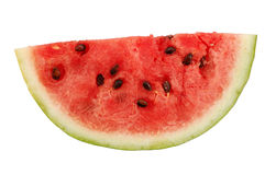 Juicy Watermelon Piece Stock Images