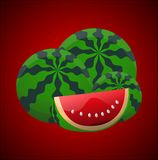 Juicy watermelon vector Stock Image