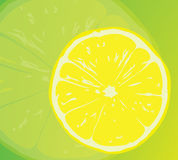 Juicy yellow lemon. Royalty Free Stock Image