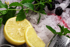 Juicy yellow lemon, sappy green leaves of mint, white pieces of ice and metallic shaker on a colorful background. Sappy green leaves of mint, silver shaker Royalty Free Stock Photos