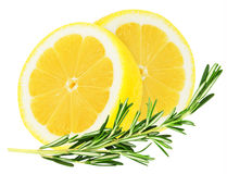 Juicy yellow lemon with a sprig of rosemary Royalty Free Stock Photography