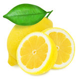 Juicy yellow lemons isolated on a white background Stock Images