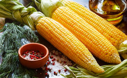 Juicy young corn ready for baking with olive oil and spices Stock Image