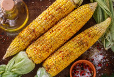 Juicy young corn ready for baking with olive oil and spices Royalty Free Stock Photography