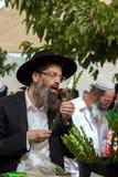 Juif d'une cinquantaine d'années religieux Images libres de droits