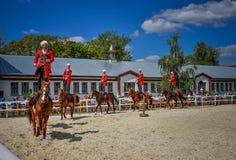 25 juillet 2015 Présentation cérémonieuse de l'école d'équitation de Kremlin sur VDNH à Moscou Photographie stock libre de droits