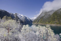 Juizhaigou national park sichuan. Long lake juizhaigou sichuan china Royalty Free Stock Image