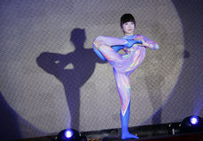 Jujitsu performance Royalty Free Stock Photo