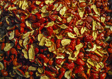Jujube dry slices. Under the sunshine Stock Photography