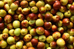 Jujube Stock Photography