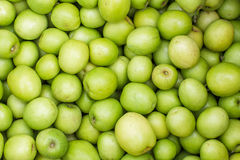 Jujube mike, a delicious fruit in Thailand Royalty Free Stock Photography