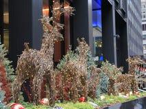 Julälgar med ljus Royaltyfri Bild
