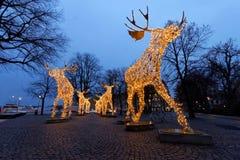Julälgflock som göras av lett ljus Royaltyfri Bild