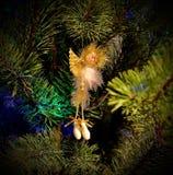 Julängel på filialer av ettträd celebratory bakgrund ` S för nytt år och jul Fotografering för Bildbyråer