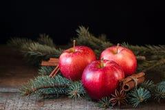 Juläpplen med kanelbrunt och badyan med filialer av julgranen arkivfoton