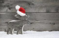 Jul älg eller ren på en träbakgrund Arkivfoto