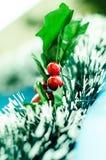 Jul! Arkivfoto