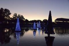 Jul dekorerade granträd i Orlando Royaltyfri Foto